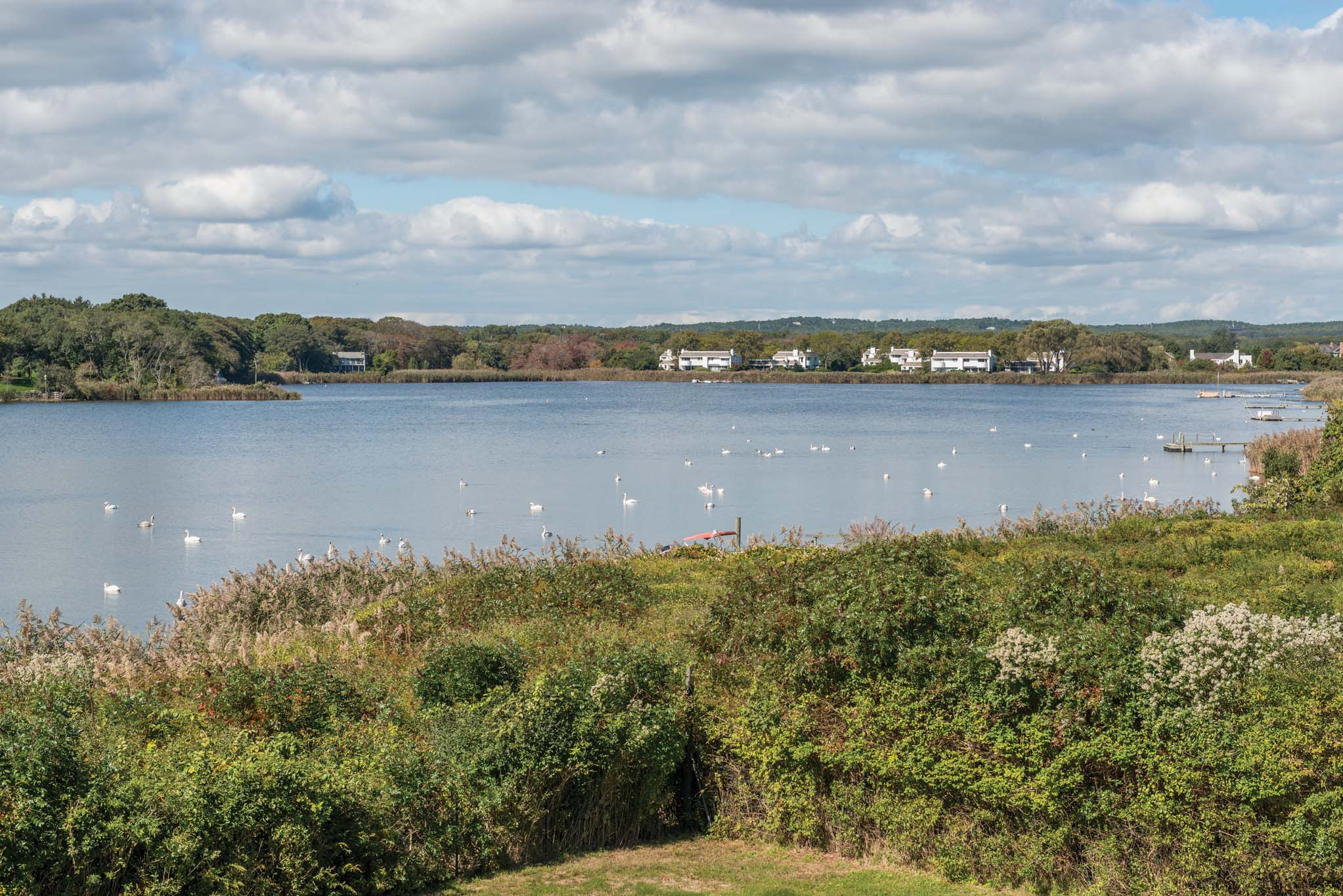 Additional photo for property listing at Boat Or Drive To Hamptons' Beaches - Waterfront With Dock & Pool 124 Brennans Moor,  Water Mill, 纽约州